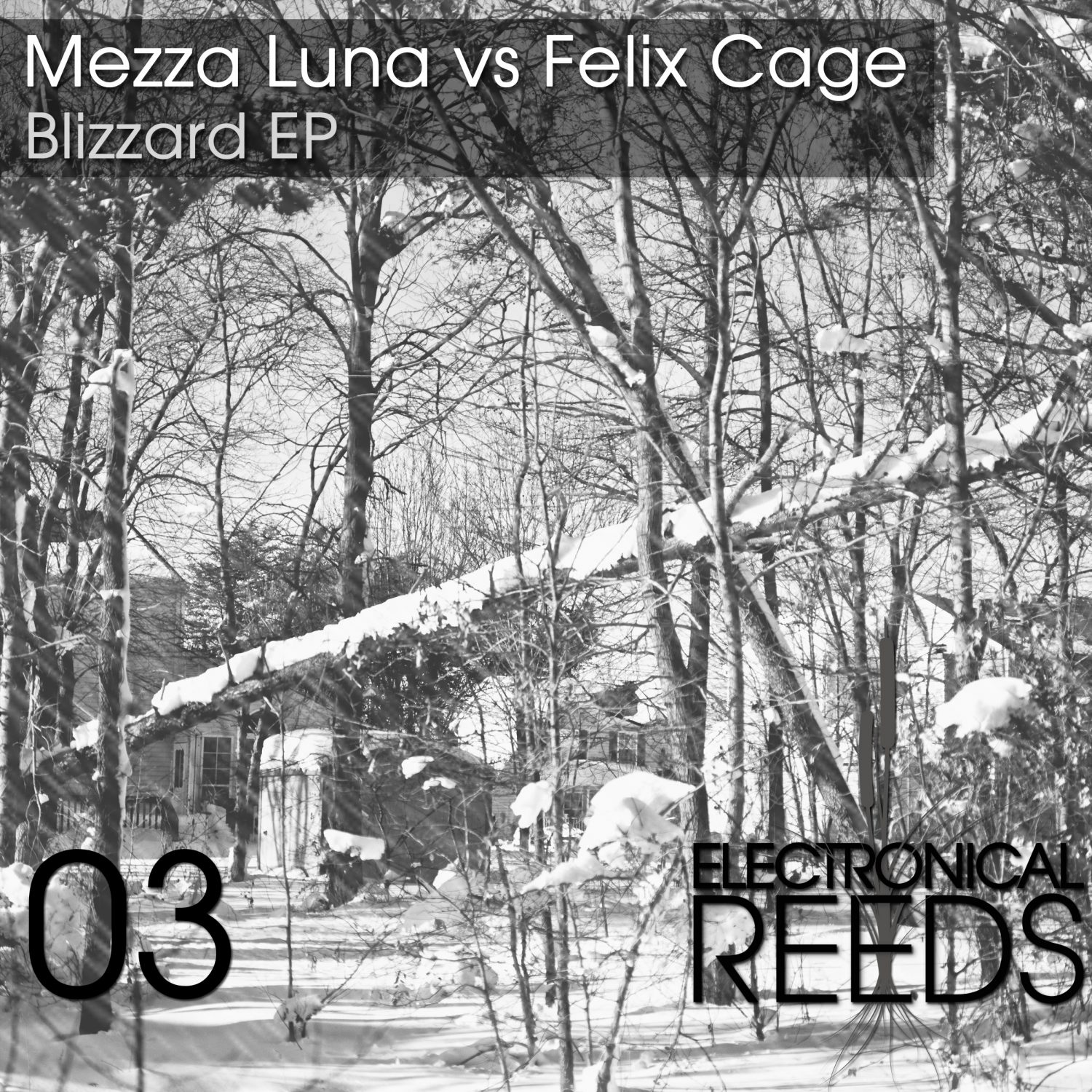 ER003 - Mezza Luna vs Felix Cage - Blizzard EP (incl. Tokyo Black Star & Pole Folder Remix) - Electronical Reeds