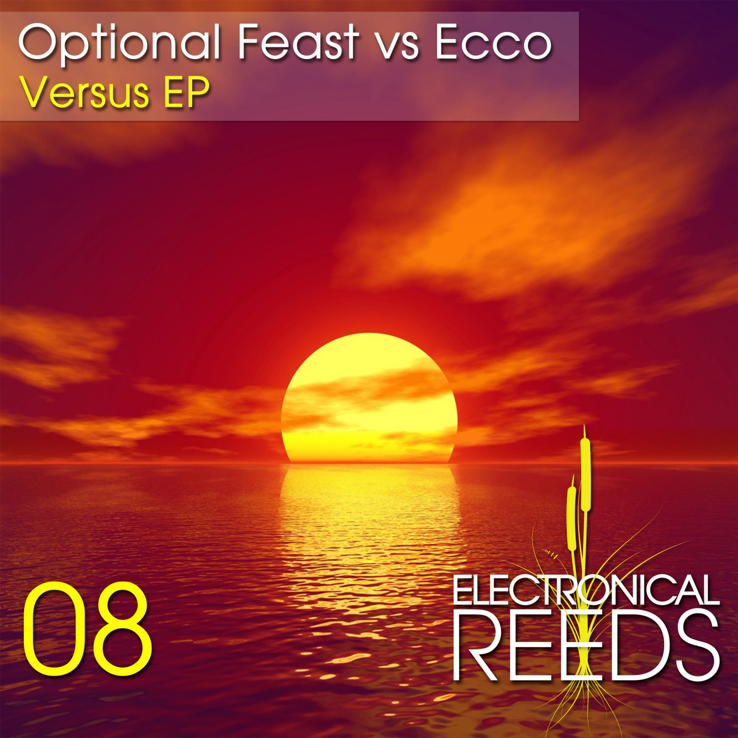 ER008 - Optional Feast vs Ecco - Versus EP - Electronical Reeds
