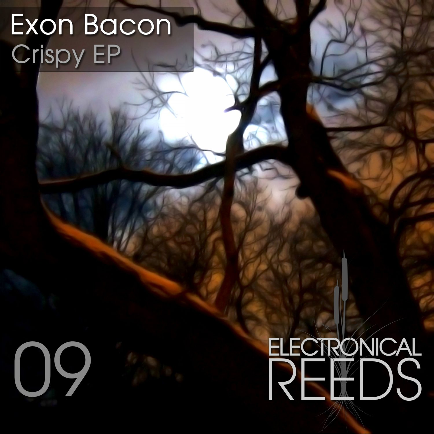 ER009 - Exon Bacon - Crispy EP - Electronical Reeds