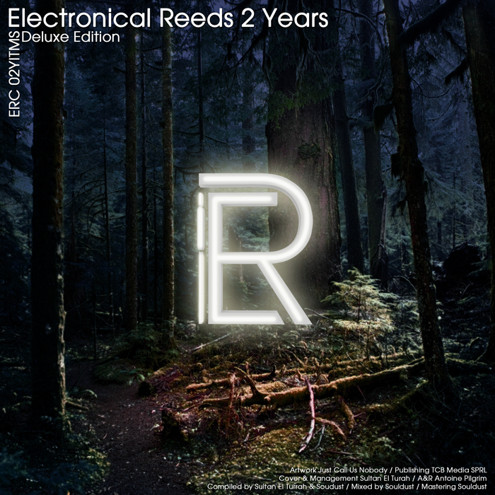 ERC02YITMS - Electronical Reeds 2 Years
