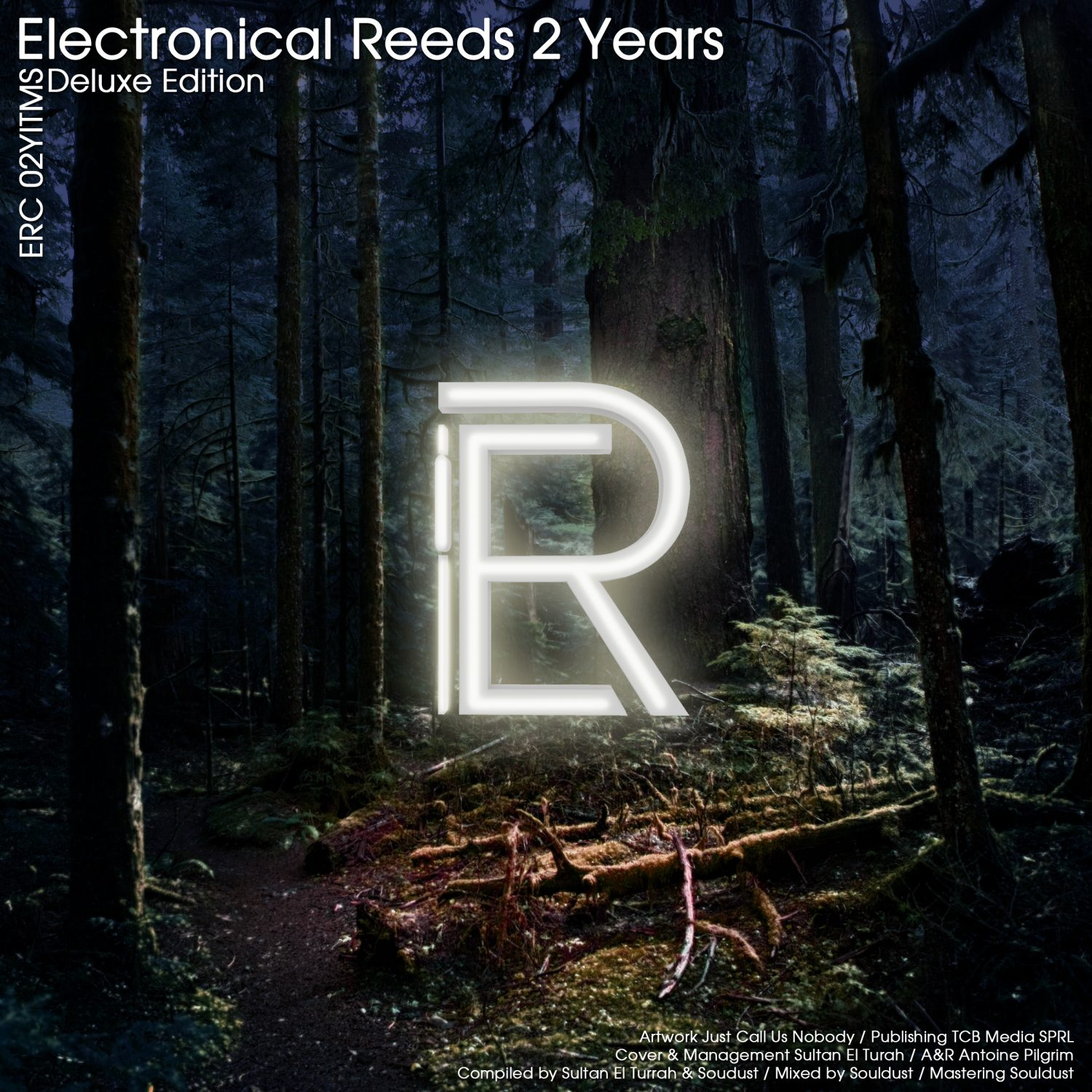 ERC02Y - Various Artists - Electronical Reeds 2 Years