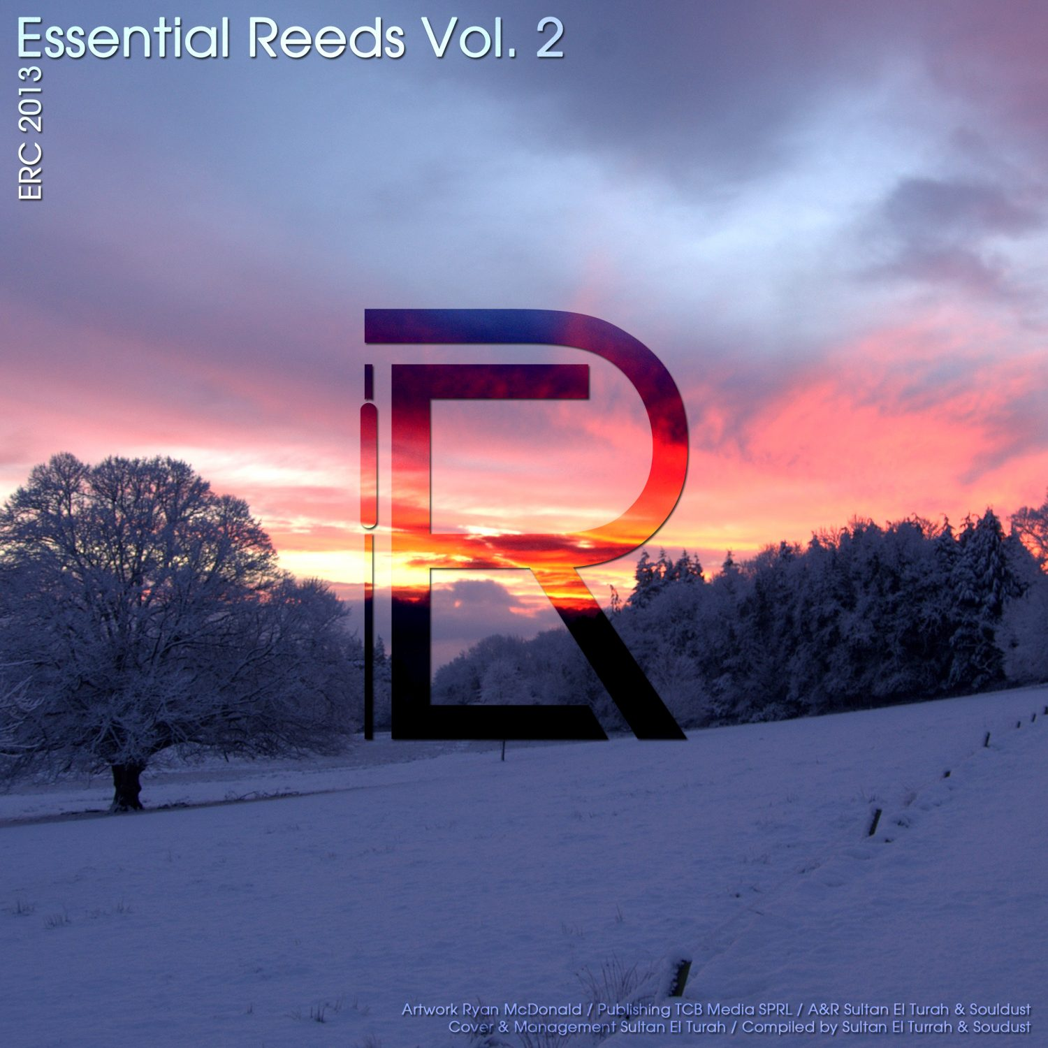 ERC2013 - Essential Reeds Vol. 2 - Electronical Reeds