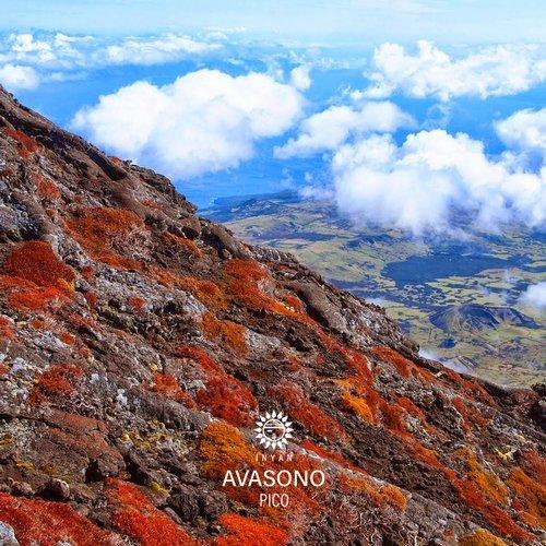 Avasono - Pico (Felix Cage Remix) - Inyan Music